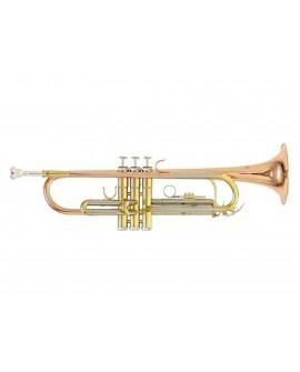 Roy Benson Trompeta TR 202G Dorado - Envío Gratuito